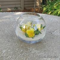 Yellow rose bowls Boksburg